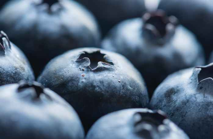 close up photography of blueberries